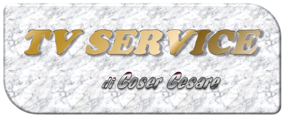 Logo della ditta TV SERVICE